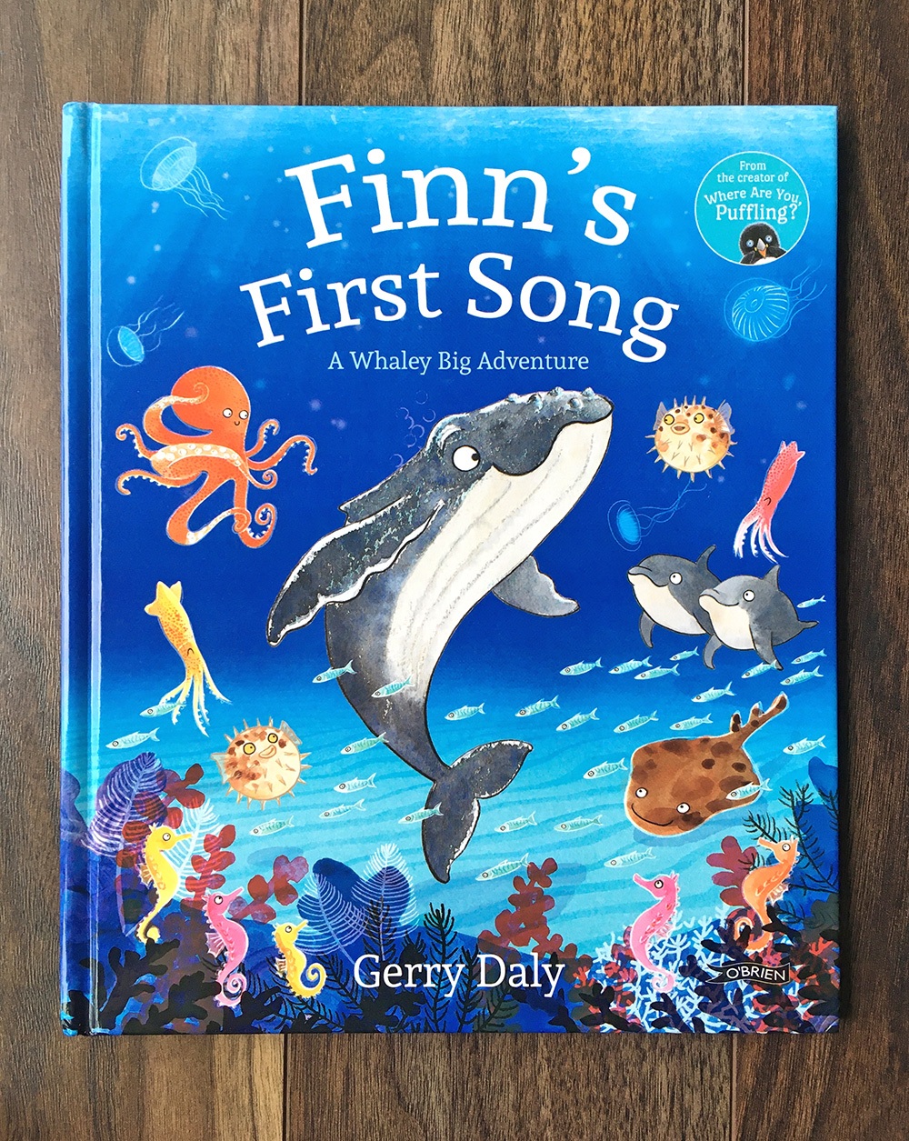Finn's First Song front cover